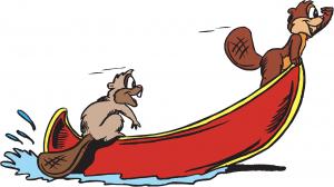 castores en canoa